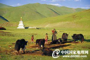 Yushu, Qinghai (青海玉树)